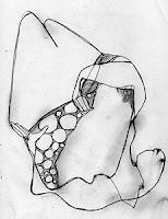 la courbe des genoux